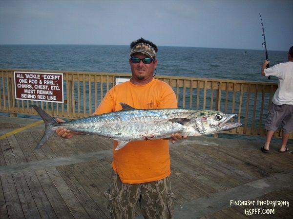 Viewing image 5 12 2010 whiskersticker gulf shores pier for Gulf shores pier fishing forum