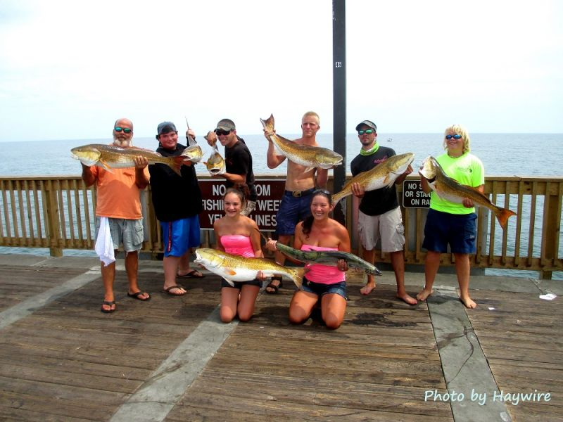 Viewing image good day in june 2013 gulf shores pier for Gulf shores pier fishing forum