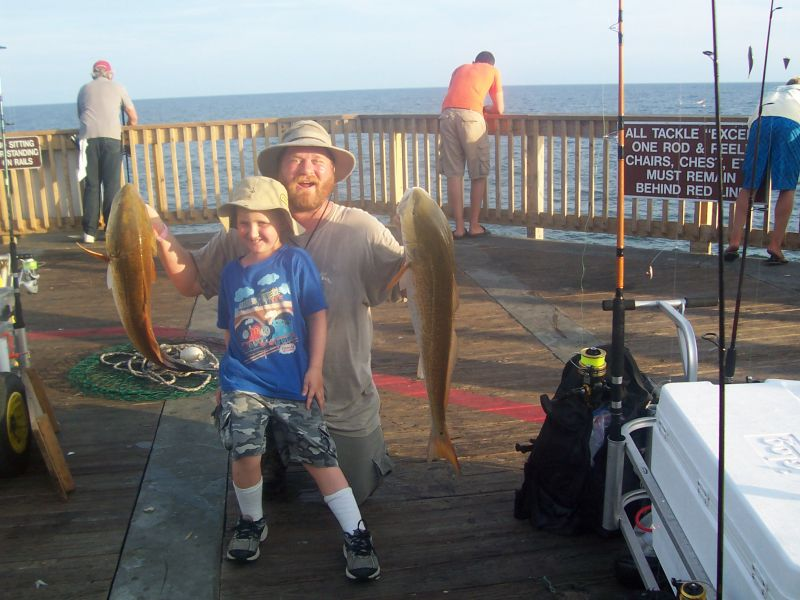 Viewing image reds on the gsp gulf shores pier fishing for Gulf shores pier fishing forum