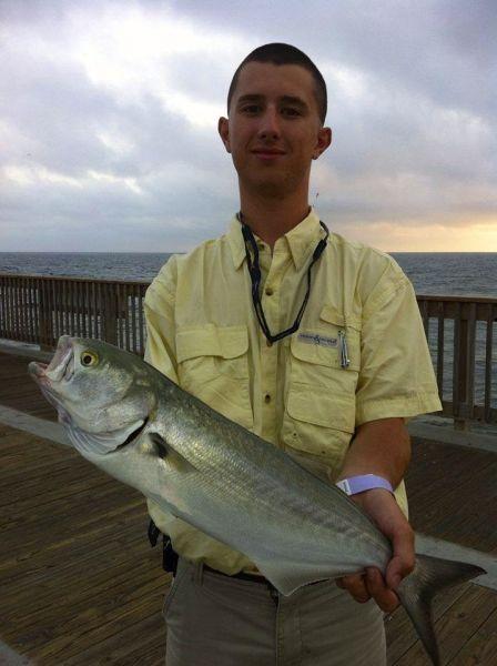 Bluefish Hit a Gotcha
