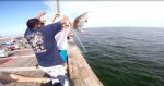 User:  A Frayed Knot