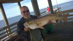 User:sknhgy Name:redfish.jpg Title:redfish.jpg Views:62 Size:58.61 KB