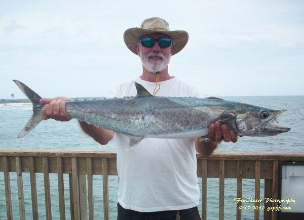 Viewing image 4 17 2012 king gulf shores pier fishing forum for Gulf shores pier fishing forum